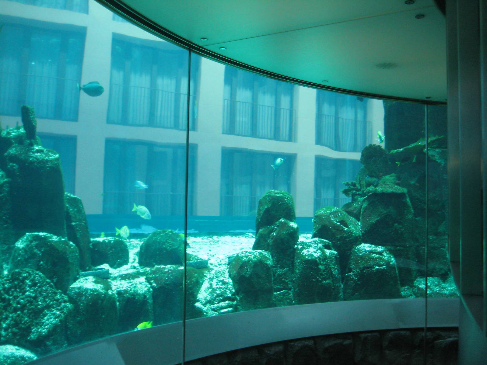 Aquadom Berlin Elevator - Zoochat