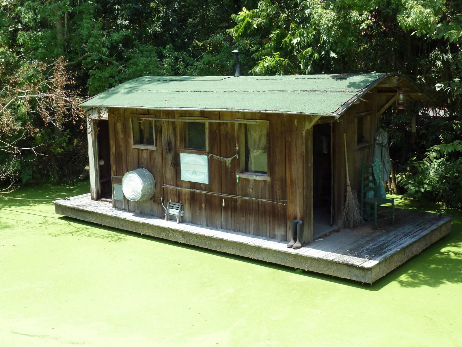 Louisiana Swamp - Alligator Exhibit Houseboat Zoochat