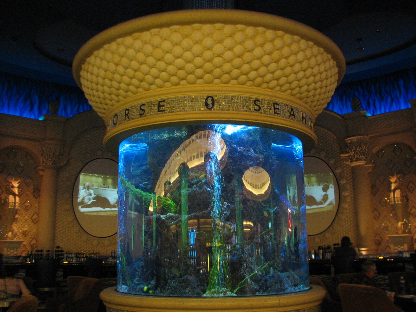 Seahorse Lounge Aquarium In Caesar' Palace Hotel Casino