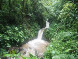 Waterfall in Monteverde