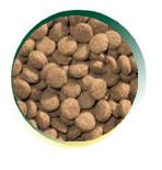 Mangus del Sole - Dog Hypoallergenic Monoproteico Agnello Riso. 12kg