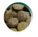 Mangus del Sole - Dog Grain Free Eglefino Patata Dolce. 12kg