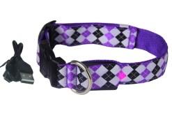 Let's Pet – Collare USB lampeggiante. Colore viola taglia XL