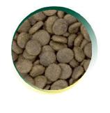 Mangus del Sole - Dog Grain Free Senior Tacchino Patata Dolce. 6kg