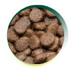 Mangus Del Sole - Dog Grain Free Small B. Salmone Trota. 6kg