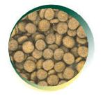 Mangus del Sole - Dog Hypoallergenic Monoproteico Small B. Tacchino Riso. 2kg