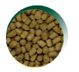 Mangus del Sole - Cat Hypo Tacchino. 300gr