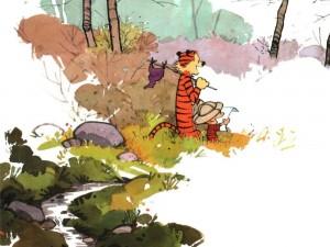 Calvin & Hobbes – Explorers