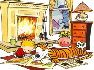Calvin & Hobbes – Fireside Comics