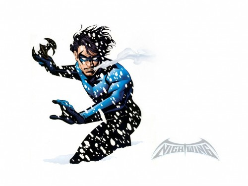 nightwing in snow