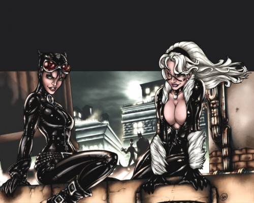 catwoman and black cat share a roof