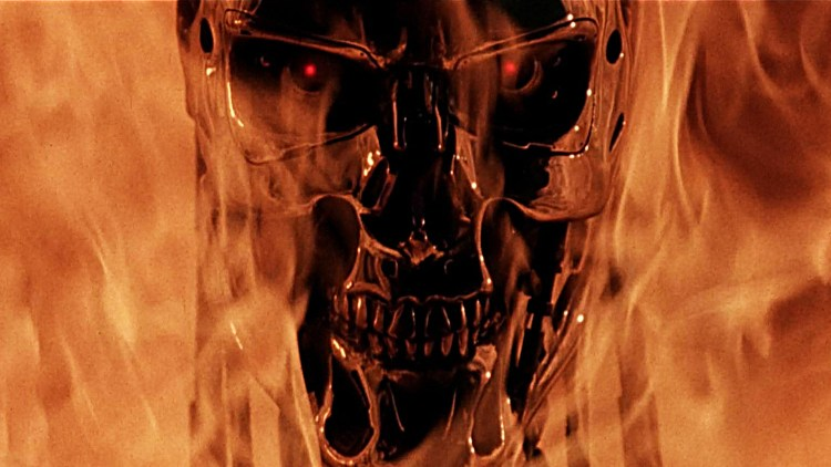 terminator in flames
