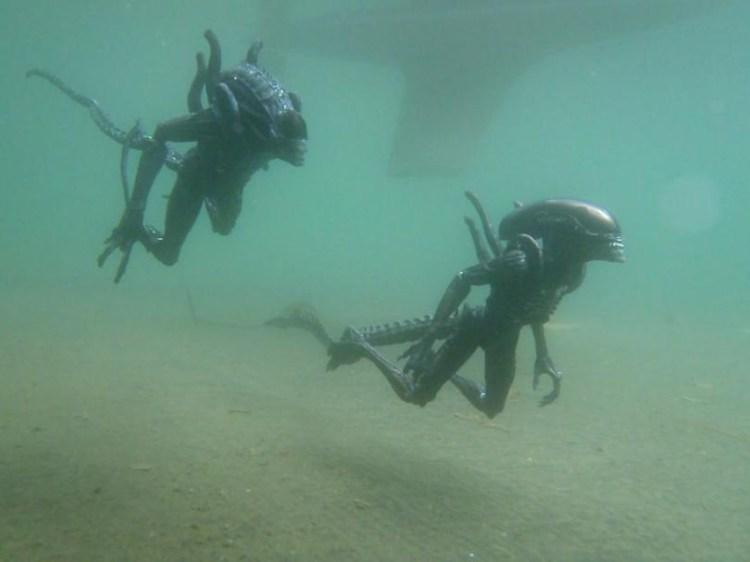 xenomorph in the lake