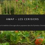 Tout savoir sur les Amap