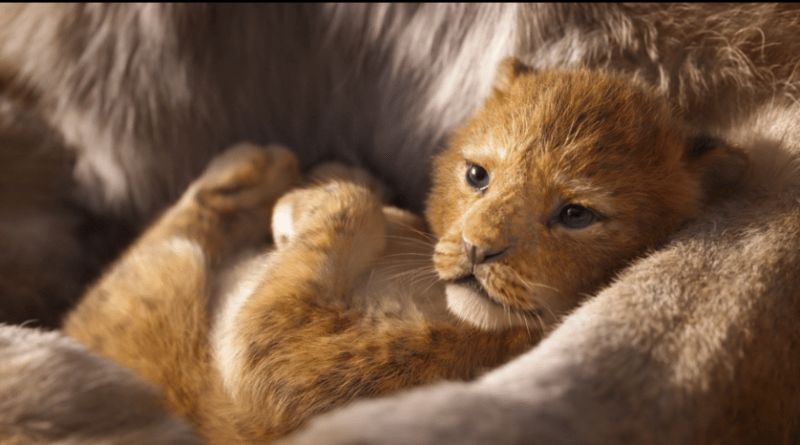Il Re Leone: il primo trailer in italiano del film Disney