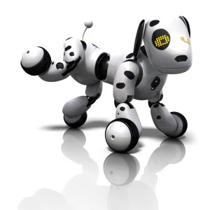 Zoomer dog Dalmatian