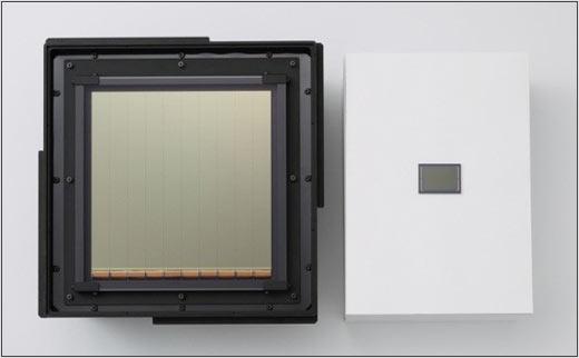 comparazione sensore gigante Canon sensore normale da 35 mm