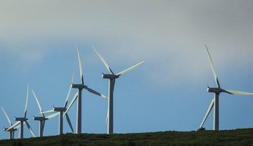 wind-farm-435790_640