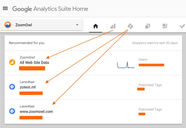 Image 1A.5. ZoomOwl Google Analytics Organization Page