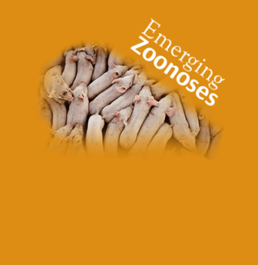 Emerging Zoonoses & Infectious disease Theme