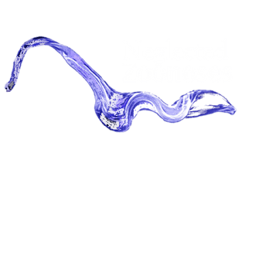 Neglected Zoonoses Theme