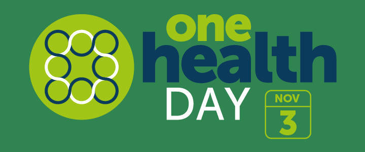 International One Health Day