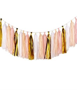 20PCS Shiny Tassel Garland Tissue Paper Tassel Banner,Table Decor,Tassels Party Decor Supplies, DIY Kits – (Gold/Peach Color/Light Pink/White)