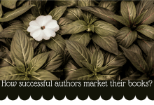 How Successful Authors Market Their books