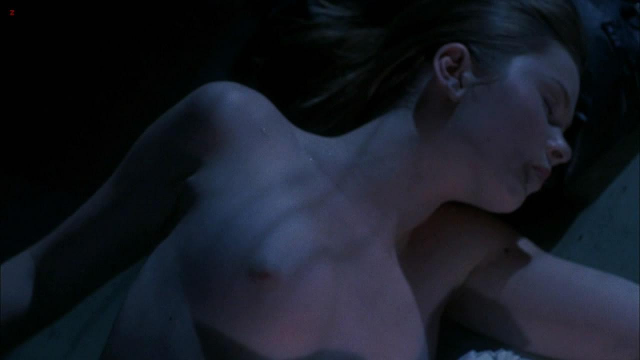 Cherilyn Wilson naked topless - Parasomnia (2008) HD 1080p (16)