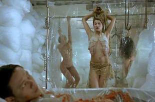 Laetitia Casta nude bush and briefly nude topless – Visage (2009)