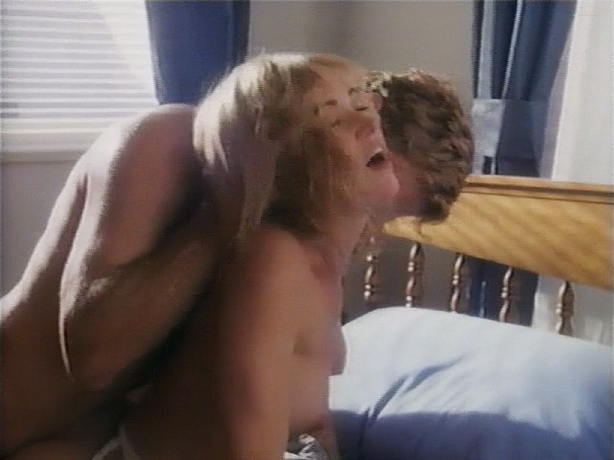 Shannon Whirry nude Elizabeth Sandifer and Shannon McLeod all nude and sex in - Animal Instincts II (1994) (15)