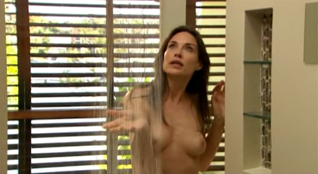 Claire Forlani nude topless in the shower - The Diplomat (2009) (5)