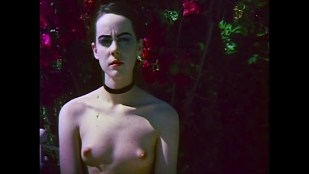 Jena Malone nude topless - The Painted Lady