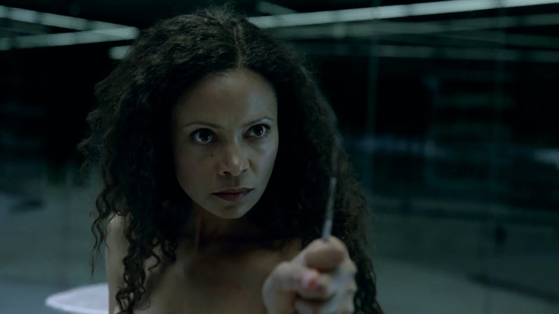 Thandie Newton nude topless and butt - Westworld (2016) s1e2 HD 1080p (5)
