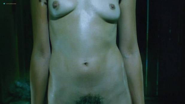 Kari Wuhrer nude topless and sex - King of the Ants (2003) HD 1080p BluRay (6)