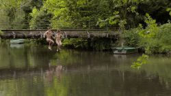 Léa Mesnil nude full frontal - Trois (FR-2013) HD 1080p WEB (2)
