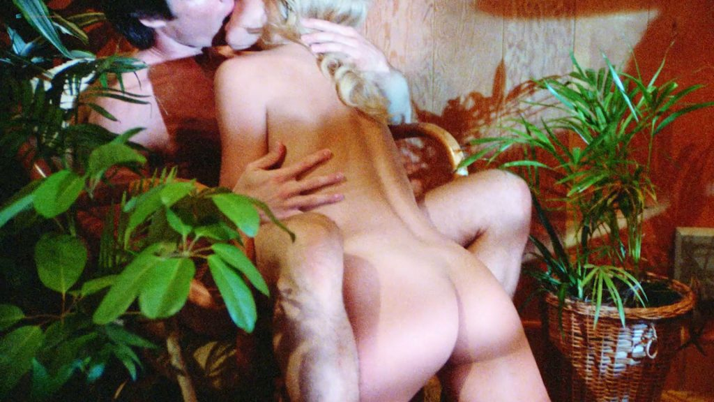 Dona Speir nude Hope Marie Carlton and Patty Duffek nude too- Hard Ticket to Hawaii (1987) HD 1080p BluRay (4)