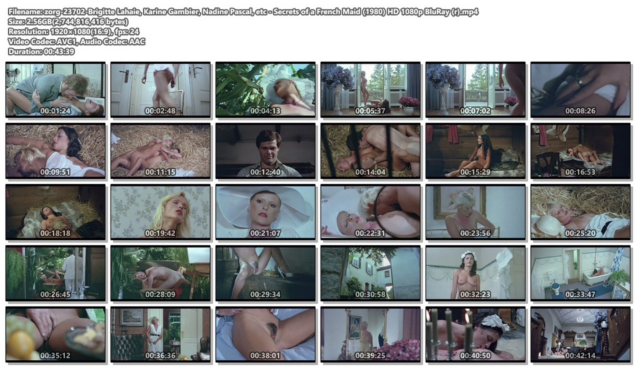 Brigitte Lahaie nude Karine Gambier, Nadine Pascal nude sex - Secrets of a French Maid (1980) HD 1080p BluRay (r) (1)
