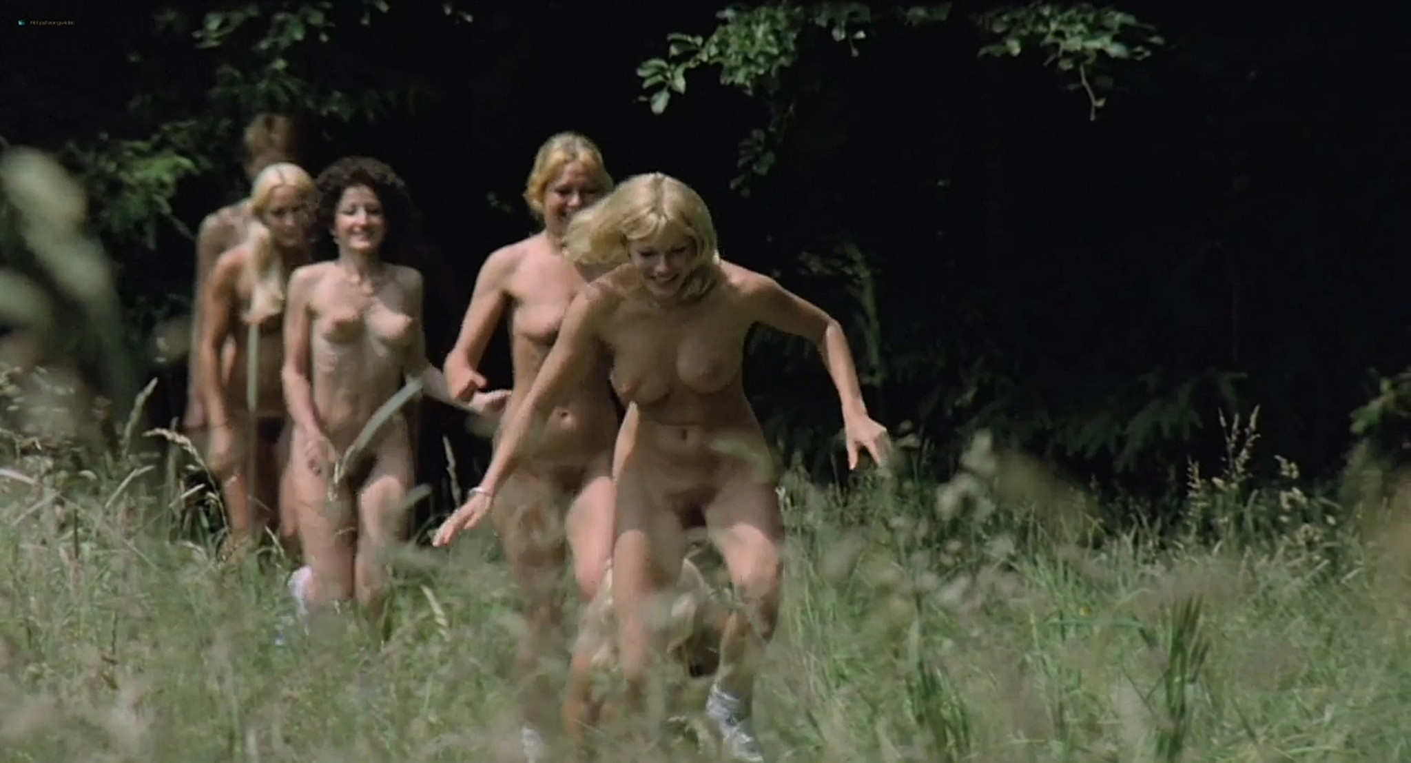 Brigitte Lahaie nude labia Nadine Pascal and other nude full frontal and sex Six Swedish Girls in a Boarding School 1979 HD 720p 015