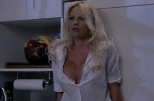 Anna Faris sexy Pamela Anderson, Jenny McCarthy busty - Scary Movie 3 (2003) 1080p BluRay