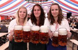 Festival de cervejas tchecas | Foto: Divulgação