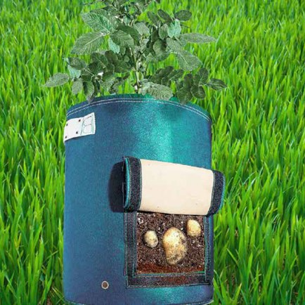 potato-planter-with-flap-6542