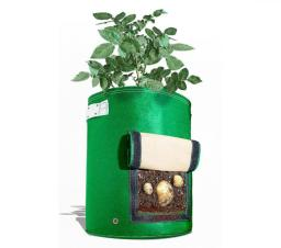 potato-planter-with-flap-6878