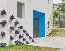 flowerwall11