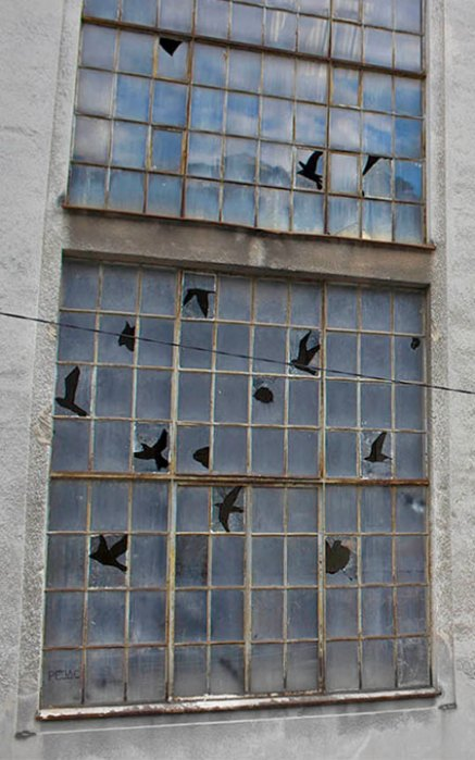 brokenwindowbirds04