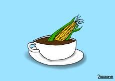 Maiskaffee