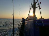 I tura Morskich Mistrzostw - Koła PZW Big Fish