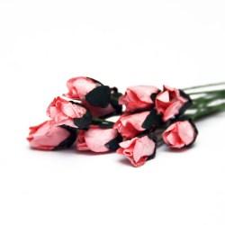 Букет троянд Petite Rosebud Champagne Pink, 12 шт, BRB1494CP