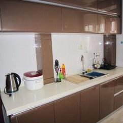 Kitchen Cabinet Brands Lazy Susan Alternatives 香槟色橱柜 槟色橱柜装修效果图 - 材料选购手册 中国装饰网 装修网 家居装饰装修
