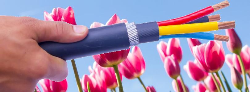 lente 2020 met drie fase kabel